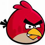 Angry Birds Bird Icon Playing Nsa Spying