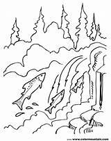 Coloring Waterfall Mountain Landscape Streams Lake Salmon Printable Nature Fish Adult Cycle Chinook Template Getcolorings sketch template