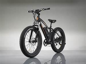 E Bike Power : rad power bikes co founders named to forbes ~ Jslefanu.com Haus und Dekorationen
