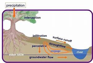 Water Cycle Diagram Percolation In