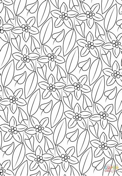 Coloring Pattern Pages Floral Printable Drawing Crafts