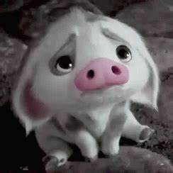 Disney Moana GIF - Disney Moana Pig - Discover & Share GIFs