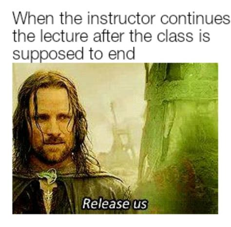 The Lord Of The Rings Memes - funny lord of the rings memes barnorama