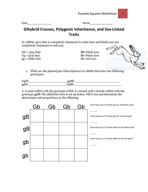 Worksheet Dihybrid Crosses Worksheet Grass Fedjp Worksheet Study Site