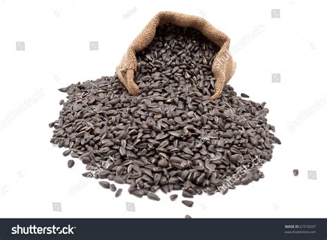 burlap sack with sunflower seeds spilling out stock photo