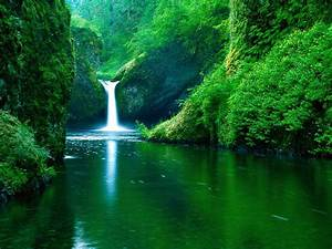 Nature Hd Pictures Background New 2013 Free Download