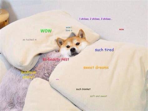 How To Pronounce Doge Meme - how do you pronounce doge piano forum