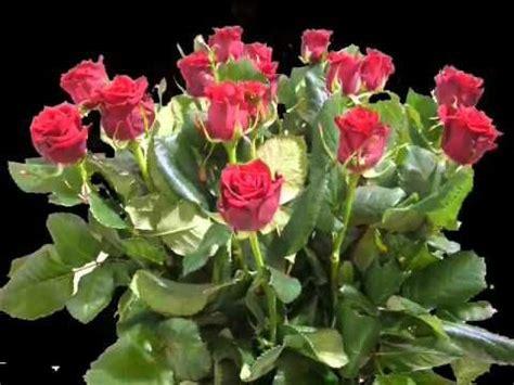 urodzinowa piosenka youtube happy birthday bouquet