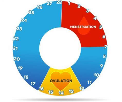 Masalah Kehamilan Fase Dan Siklus Menstruasi Pada Wanita