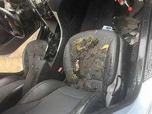 2011 Hyundai Sonata Engine Caught Fire  10 Complaints