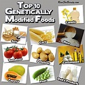 GMO food – what is the controversy really about? Are ...
