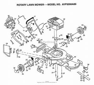 Ayp  Electrolux 3266a89  1998  Parts Diagram For Rotary