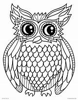 Coloring Owl Pages Printable Bird Adults Animals Night sketch template