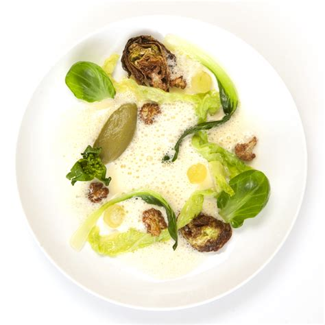modern cuisine recipes brassicas modernist cuisine