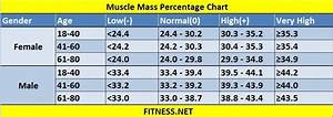 Healthy Weight Range Chart For Men Everything About Muscle Mass Percentage With Charts