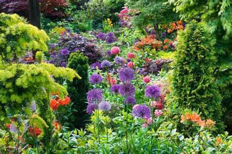 Planting Combination Ideas