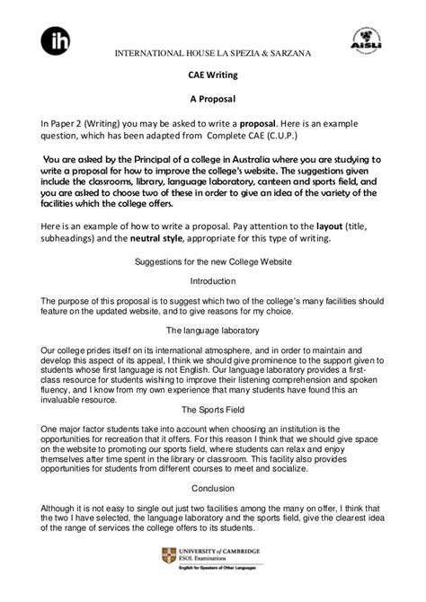 cae writing  proposal   college website