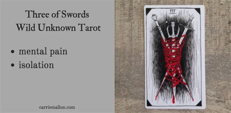 swords wild unknown tarot card meanings