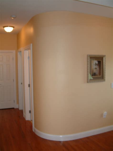 Drywall Features   Home Options   DB Homes