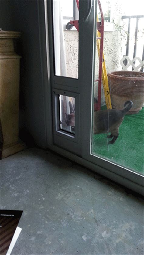the sb standard patio pet door insert is our best selling