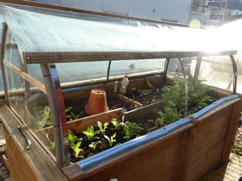 was kann in ein gewächshaus pflanzen vom hochbeet zum mini gew 228 chshaus dach selber bauen