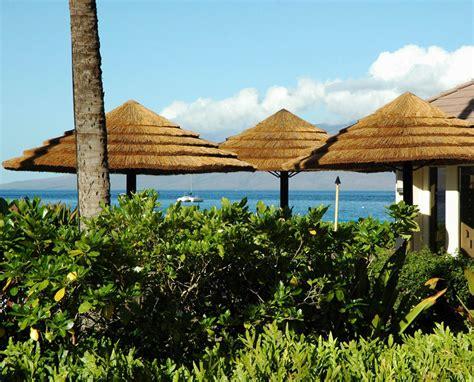 parasol exotique pas cher choisir un parasol exotique le jardin des tropiques