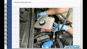 Timing Belt And Water Pump Replacement Ford C