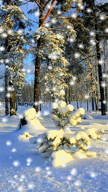 Provides three brandnew animated wallpapers. Download Animated 360x640 «winter trees» Cell Phone ...
