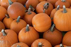 Repurposing Ideas  5 New Uses For Pumpkins
