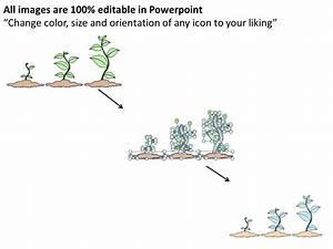 1113 Business Ppt Diagram 3 Steps Growing Plants