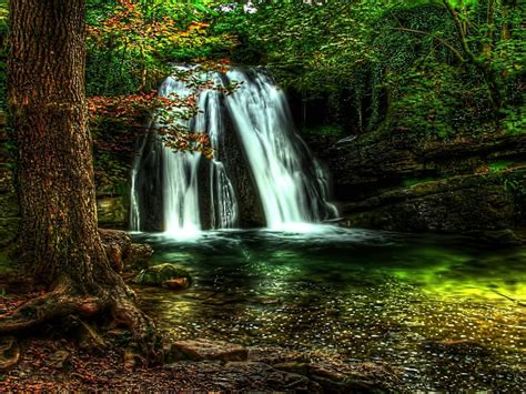 forest waterfall wallpaper full hd  desktop