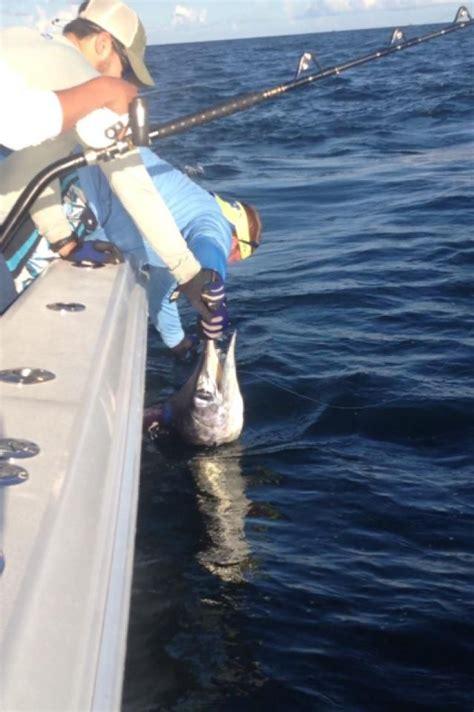 fishing venice marlin louisiana seasons