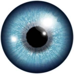 Clipart - eye, akis