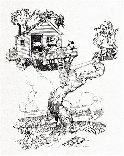 Drawing Norman Lindsay Tree Magic Pudding Treehouse