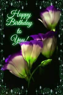happy birthday to you pictures photos and images for and