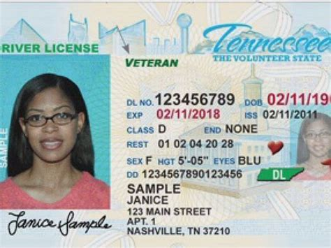 Tennessee Drivers License Template by Tn Drivers License Pictures To Pin On Pinsdaddy