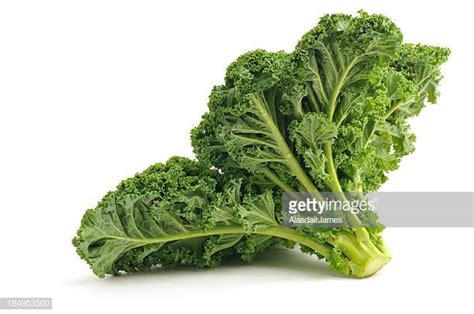kale stock   pictures getty images