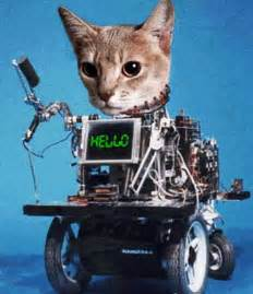 robotic cat the genious genie chat bot skeptisys
