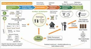 Seed systems: Models & lessons learned – ICRISAT