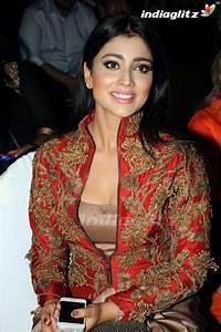 Shriya Saran - Tamil Actress Image Gallery - IndiaGlitz.com