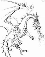 Coloring Dragon Detailed Printable Adults sketch template