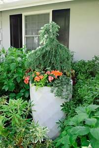Unique, Container, Gardening, Ideas