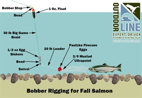 techniques springer fishing