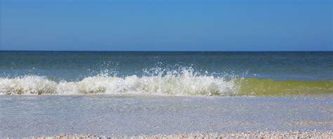 Clearwater Beach Florida - Things to Do & Attractions in