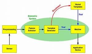 Ppt - Fusion By Biometrics Powerpoint Presentation