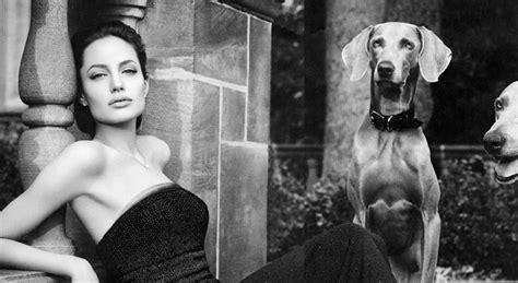 Berühmte Fotografen Und Ihre Bilder by Will Front New Vuitton Print Ads By