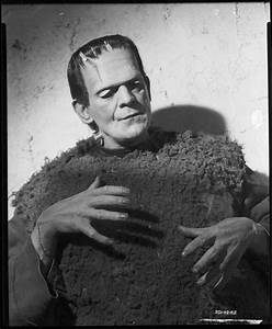 17 Best images about Frankenstein Portraits on Pinterest ...