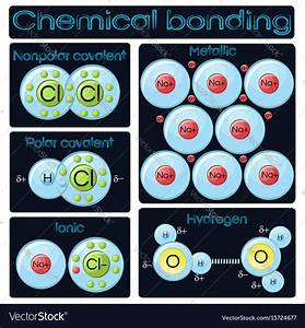 Types Of Chemical Bonding Royalty Free Vector Image