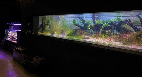 led aquarium lighting planted tank aquarium led lighting photos best reef aquarium led
