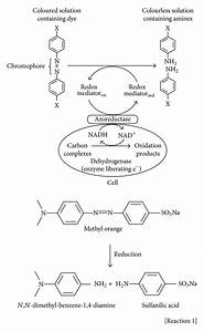 Flow Sheet Diagram For Reduction Process Of Azo Dyes